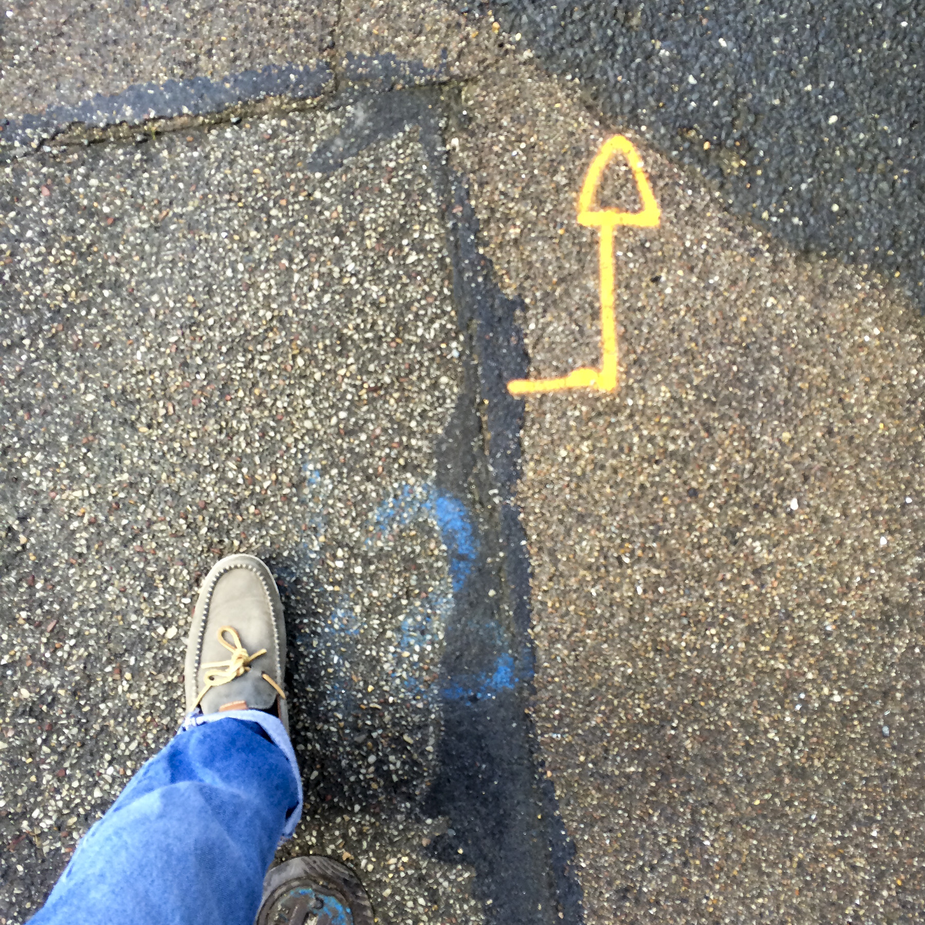 1st of 6 placeholder images: yellow arrow spraypainted on pavement, photograph's foot lower left